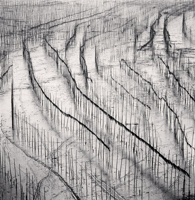 Michael Kenna, 'Seaweed Farms, Study 10, Xiapu, China', 2010