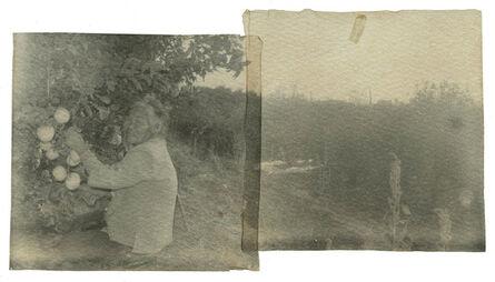 Zhang Xiao 张晓, 'Grandma Liu Picking Apples', 2013