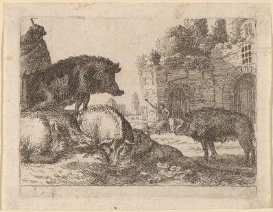 Herman van Swanevelt, 'Pigs'