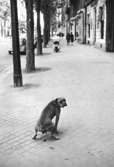 Elliott Erwitt, 'Paris', ca. 1956