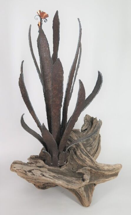 Eric Hado, 'Sword Plant with Flower', 1999
