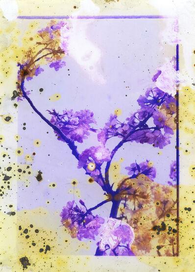 Melinda Gibson, 'Untitled III, (Lunar Caustic)', 2014