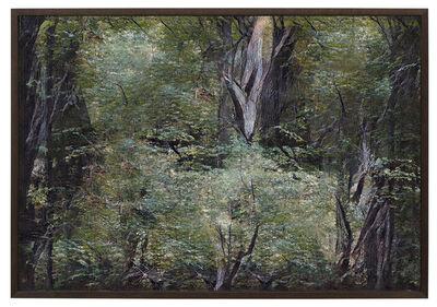 Andreas Greiner, 'Jungle_Memory_0111', 2020