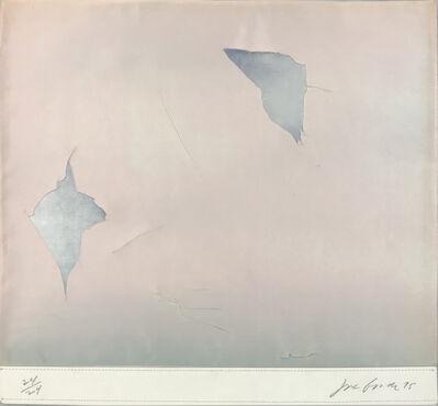 Joe Goode, 'Untitled ', 1975