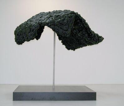 Clegg & Guttmann, 'Vokubila', 2013