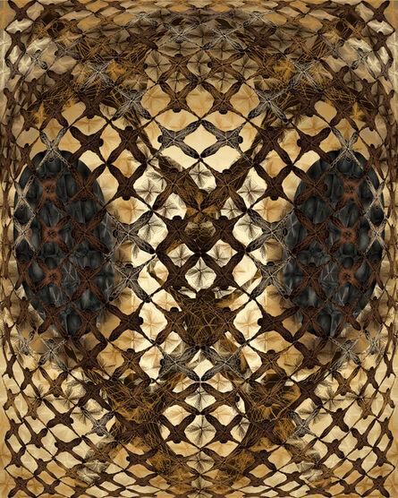 Jean-Claude Meynard, 'Honeycomb  蜂窝', 2015