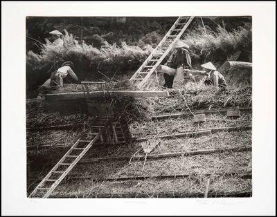 Peter Miller, 'Roof Work', 2005