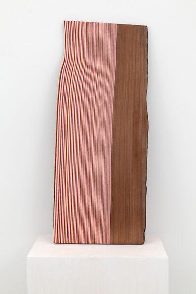 Brian Jungen, 'Shake', 2014