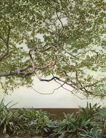 Deidre But-Husaim, 'The Shadow Tree', 2017