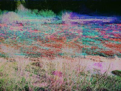 Sonya Roerich, 'Dryden Trail', 2014