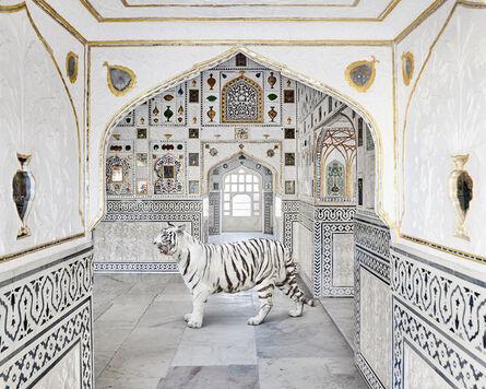 Karen Knorr, 'Tiger Breath, Shish Mahal, Amer Fort', 2020