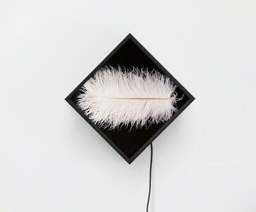 Owen Kydd, 'Knife, Sole, Feather, Scrubbers', 2015