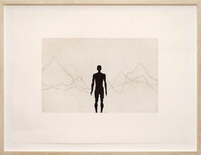 Antony Gormley, 'Horizon Field (2010) (signed)', 2010
