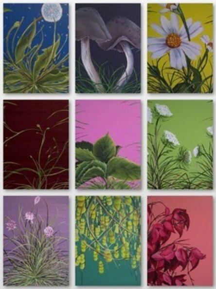 Allison Green, 'Garden Studies', 2010-2011
