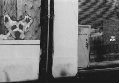 Arabella Colton, 'Wall Dog — Danger No Trespassing, Langton Alley, San Francisco 1993 ', 1993