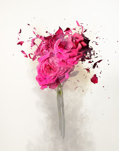 Dan Saelinger, 'Rose Explosion 3', 2020