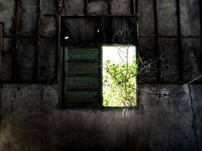 Lin Hoho 林厚成, 'Reversed Scenery¬_11', 2015