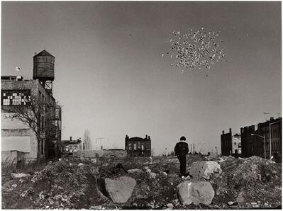 Builder Levy, 'Pigeon Cloud, Bushwick, Brooklyn', 1987