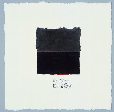 Harmony Hammond, 'Double Elegy', 2007