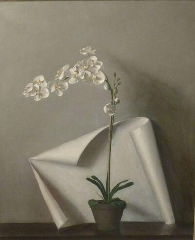 Raymond Han, 'Phalaenopsis with Cloth', Undated