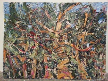 Alexey Firsov, 'Pine', 2009