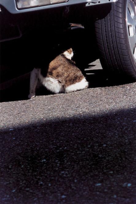 Takuma Nakahira, 'Why an illustrated human-animal dictinonary   #09-199', 2004