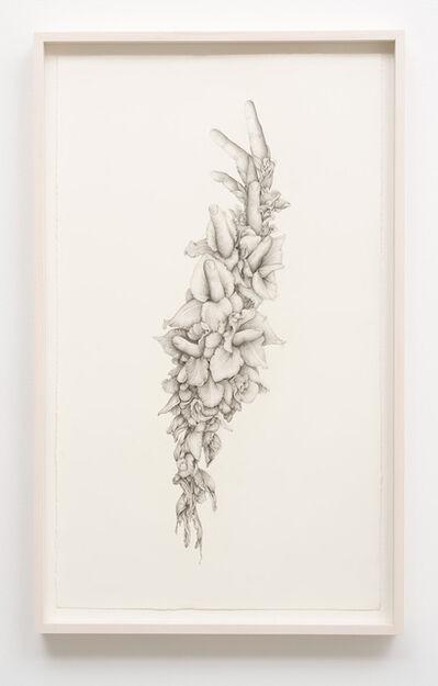 Aurel Schmidt, 'Untitled (Gladiolas)', 2014