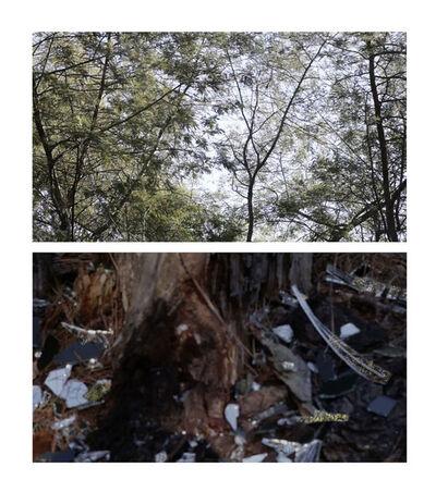 Bessma Khalaf, 'In the Woods', 2014