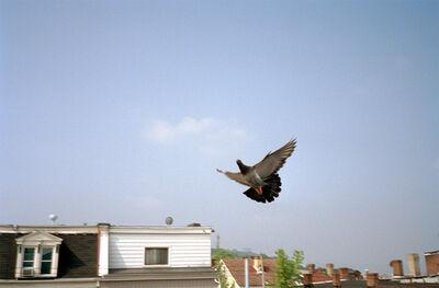 Ed Panar, 'Liberty Avenue View', 2006