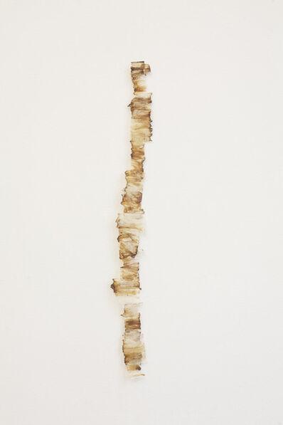 Fernanda Gomes, 'Untitled', 2013