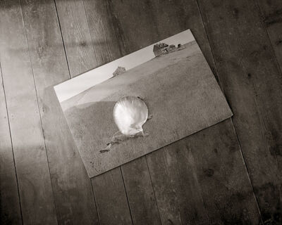 Linda Connor, 'Christina's World with Shell…after Early Linda Connor', 2006