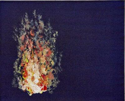 """Afonso Tostes, 'Fogo mensageiro - SC - """"untitled No. IX""""', 2016"""