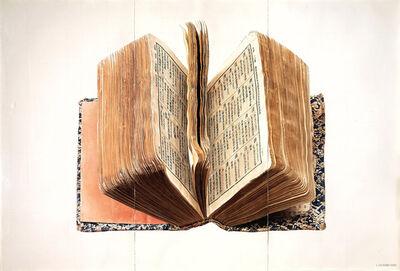 Liu Dan, 'Dictionary 字典', 1991