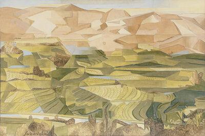 Jehangir Sabavala, 'Rice Fields, Plani Hills - II', 2008