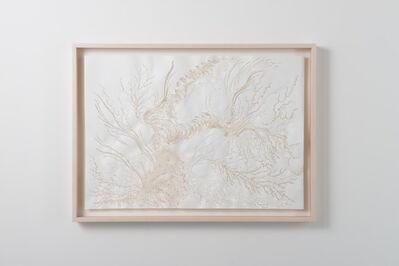 Tomoko Shioyasu, 'Differentiation', 2013