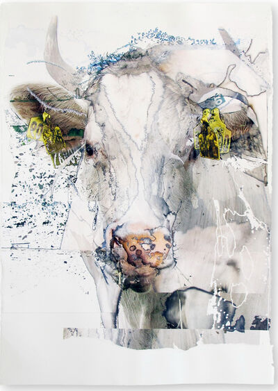 Deborah Oropallo, 'Trigger', 2013