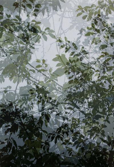 Cheng-Yen LIN, '映像‧印象-18  Reflection・Impression-18', 2019
