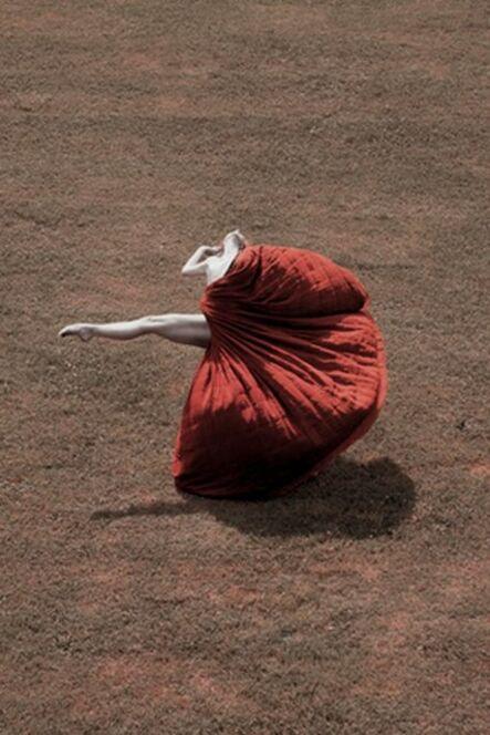 Guilherme Licurgo, 'Petals and The Wind ', 2011