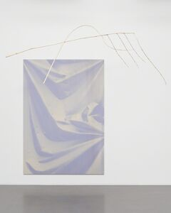 Ulla von Brandenburg, 'Folds and Branch', 2015