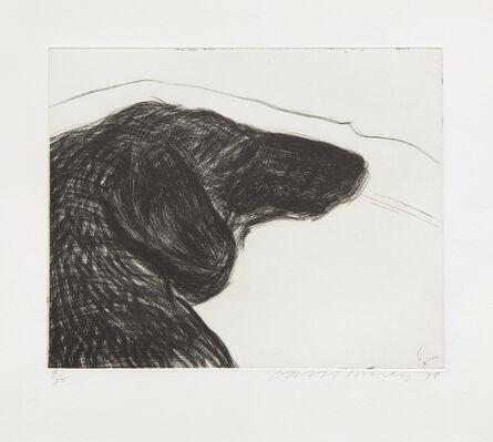 David Hockney, 'Dog Etching No. 6, from Dog Wall', 1994
