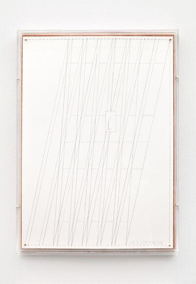 Kasper Bosmans, 'Fox Whiskers 20', 2015