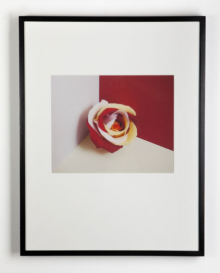 Liat Elbling, 'For Each Time I Wanted to Leave #5', 2011