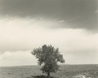 Robert Adams (b.1937), 'Pawnee National Grasslands, Colorado', 1984