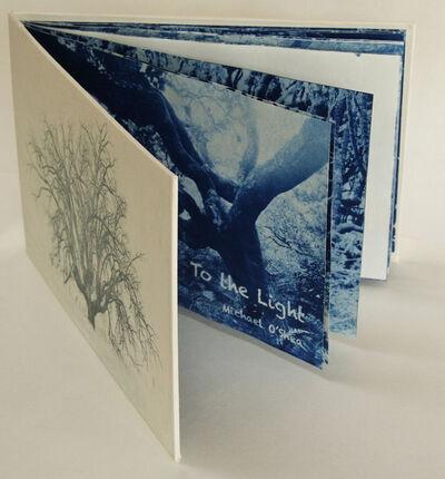Michael O'Shea, 'To The Light', 2013