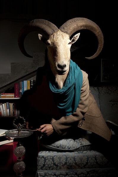 Daniela Edburg, 'Civilized Goat', 2014