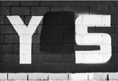 Shannon Ebner, 'Y/S', 2013