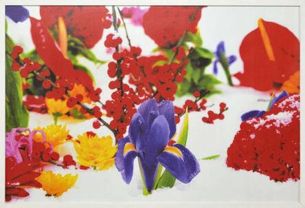 Marc Quinn, 'Winter Garden', 2004