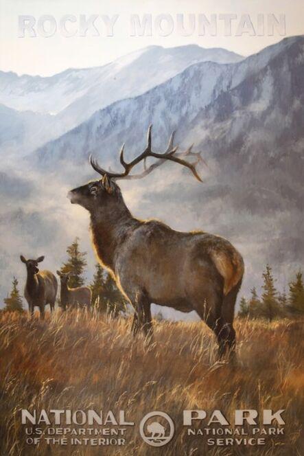 Jennifer Johnson, 'Rocky Mountain National Park - Elk', 2020