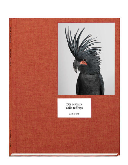 Leila Jeffreys, 'Des oiseaux', 2020