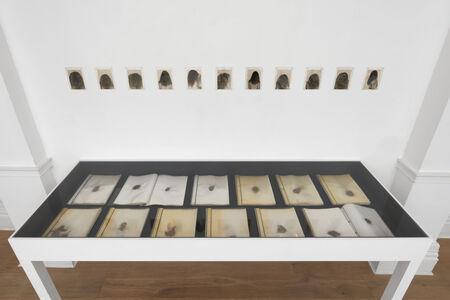 Annegret Soltau, 'Meine verlorenen Haare [My lost hair]', 1977